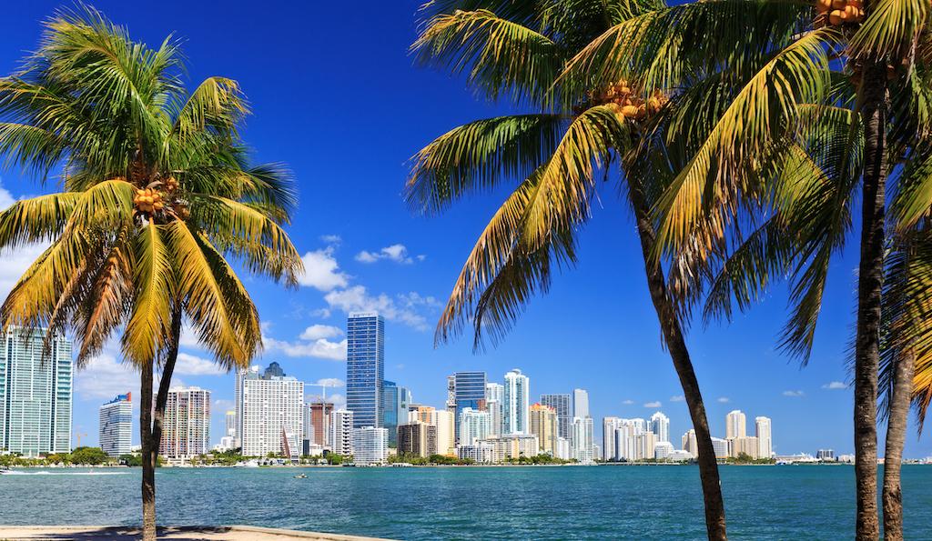 Tag Miami cover image